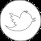 my twitter feed