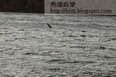 尼斯湖水怪最新影片傳曝光 長脖生物水中游動