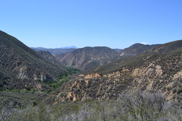 looking back to the west along Fish Canyon