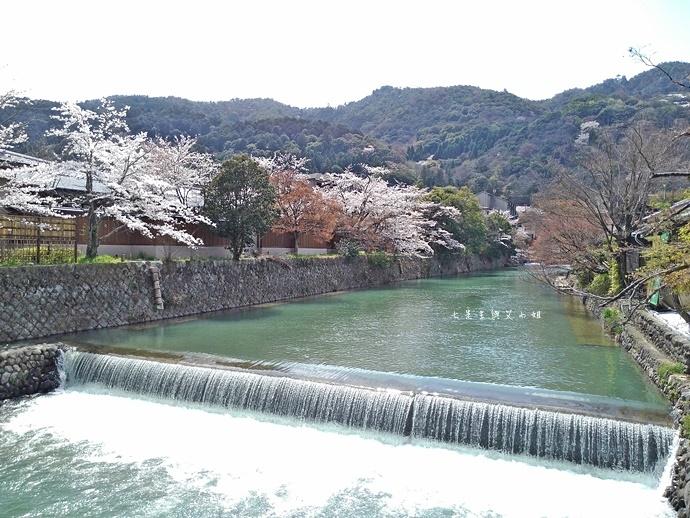 16 京都 嵐山渡月橋 賞櫻 櫻花 Saga Par 五色霜淇淋 彩色霜淇淋