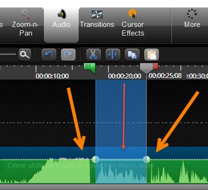 eliminare-audio-camtasia
