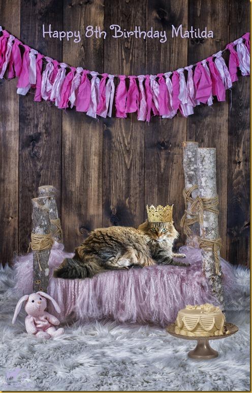 Matilda 8th Birthday Color (©Bell Fur Zoo)