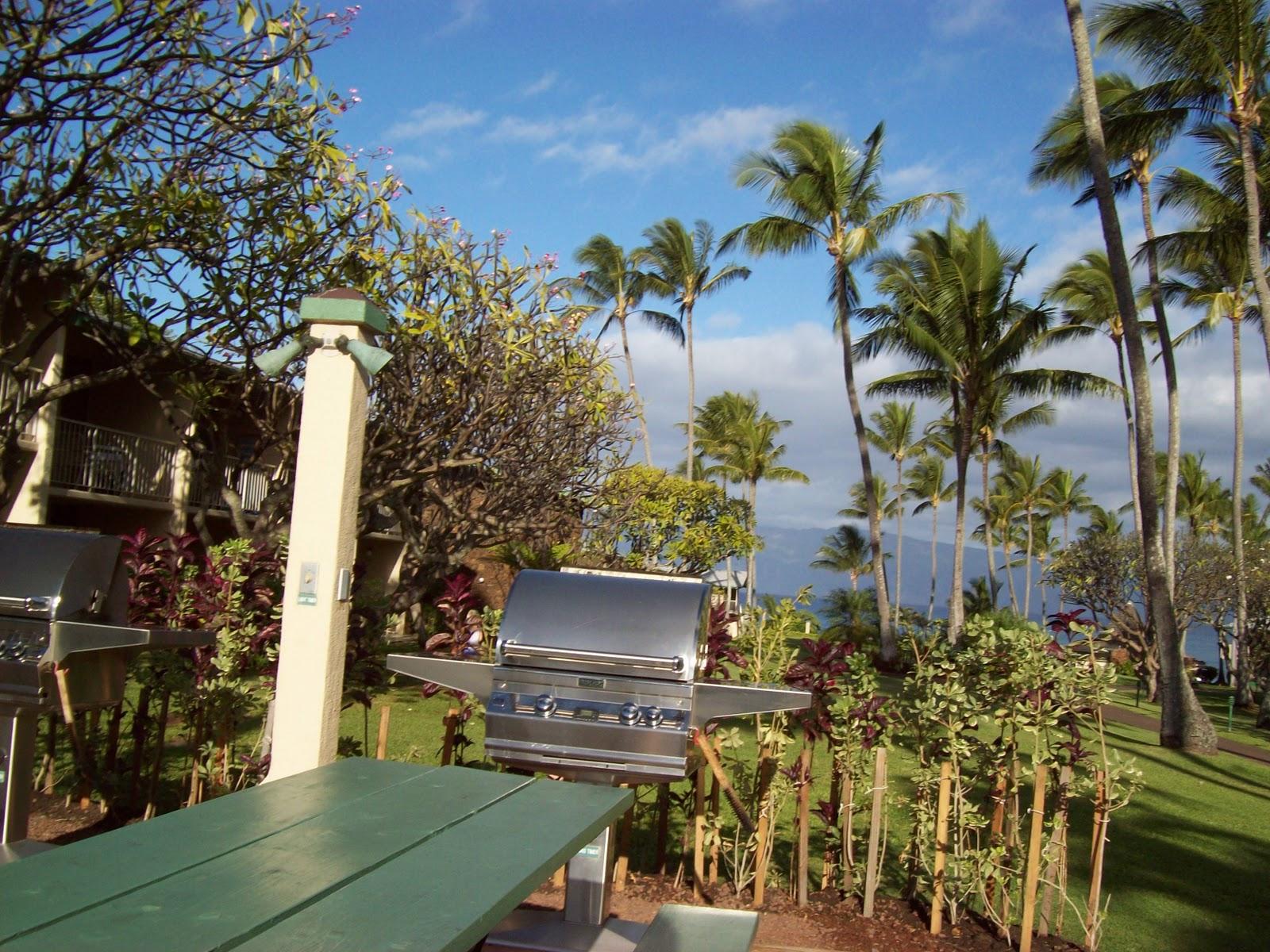 Hawaii Day 6 - 100_7571.JPG