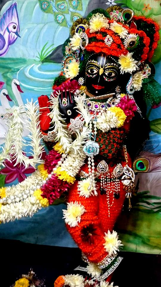 ISKCON Bhusawal Deity Darshan 23 Jan 2016 (10)