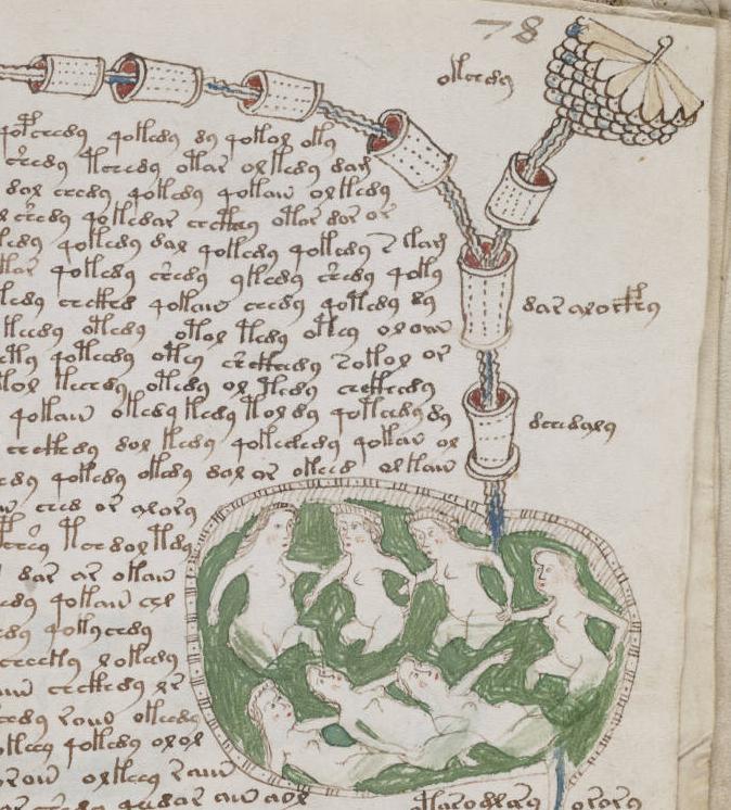 Voynich Manuscript Facsimile of The Voynich Manuscript