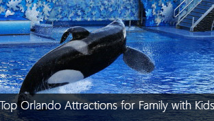 Top 4 Orlando Attractions for Family with Kids