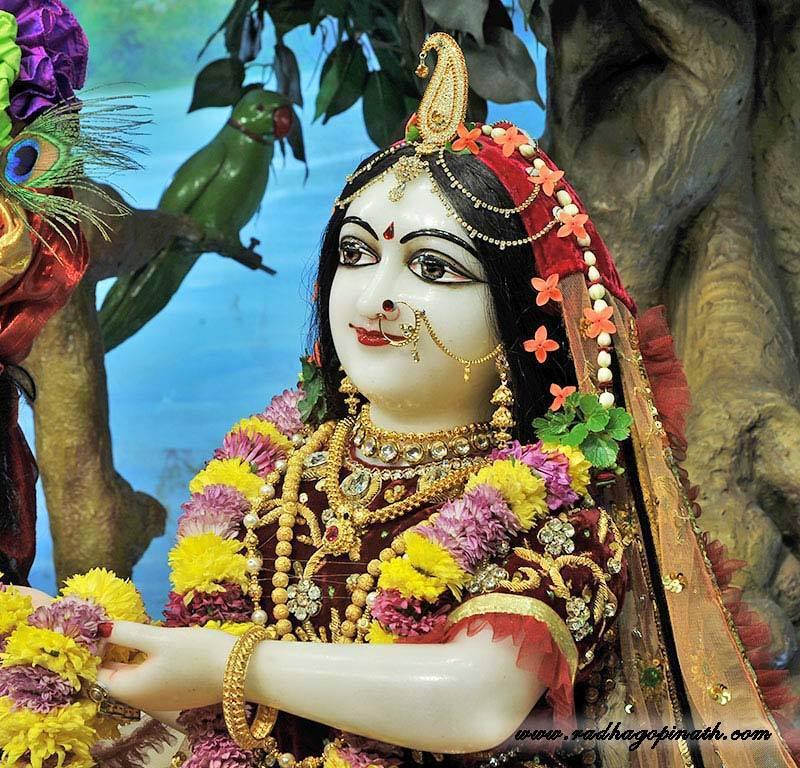 ISKCON Chowpatty Deity Darshan 22 Dec 2015 (5)