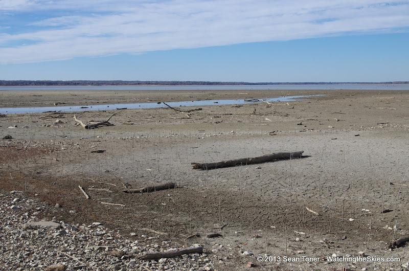 01-19-13 Hagerman Wildlife Preserve and Denison Dam - IMGP4039.JPG