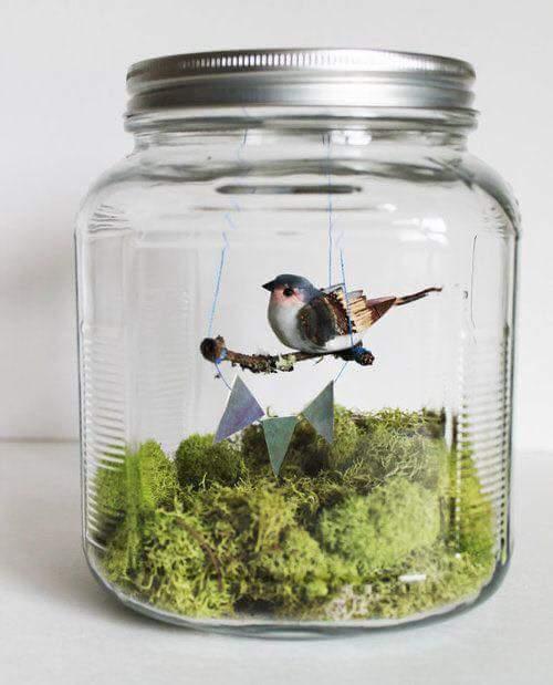 M s y m s manualidades bellos adornos de p jaros en frascos for Glas dekorieren