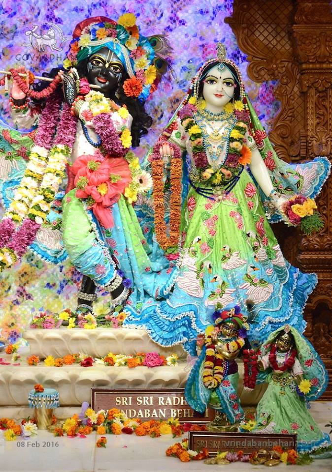 ISKCON GEV (Wada) Deity Darshan 08 Feb 2016 (7)
