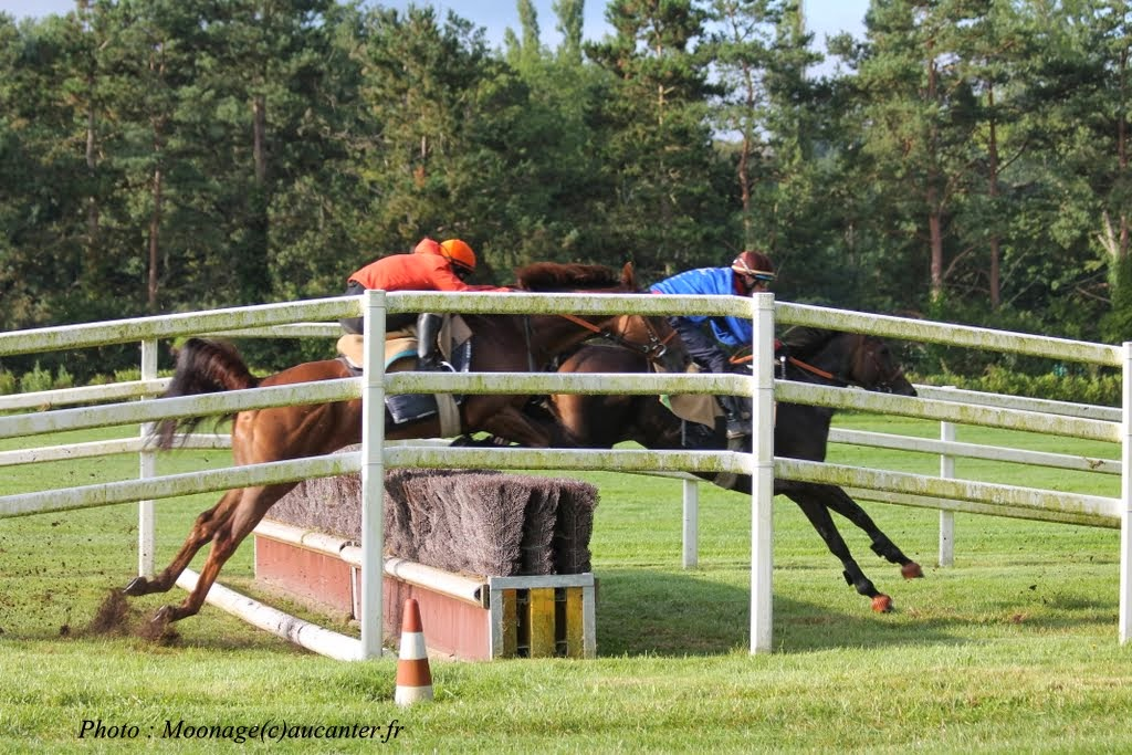 Photos Lamorlaye entrainement obstacle 14-08-2014 IMG_2876