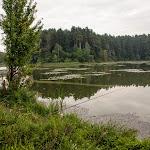 20140813_Fishing_Sergiyivka_003.jpg