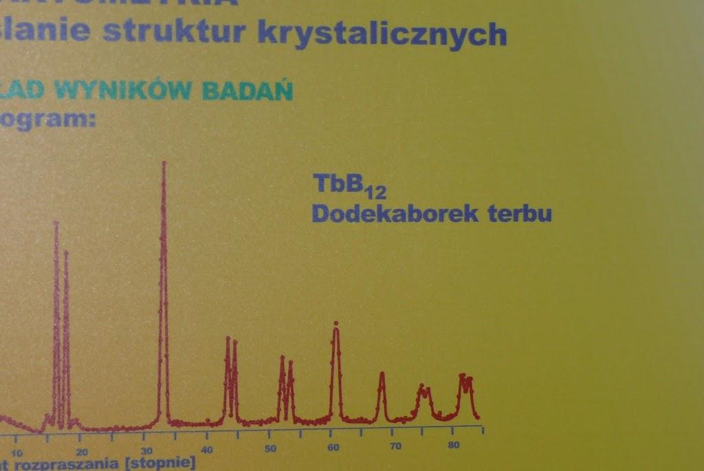 Belsk - Świerk 2011 (SB) - P1060353.JPG