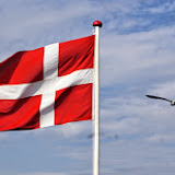Soustředění Dánsko - Žáci a Kadeti
