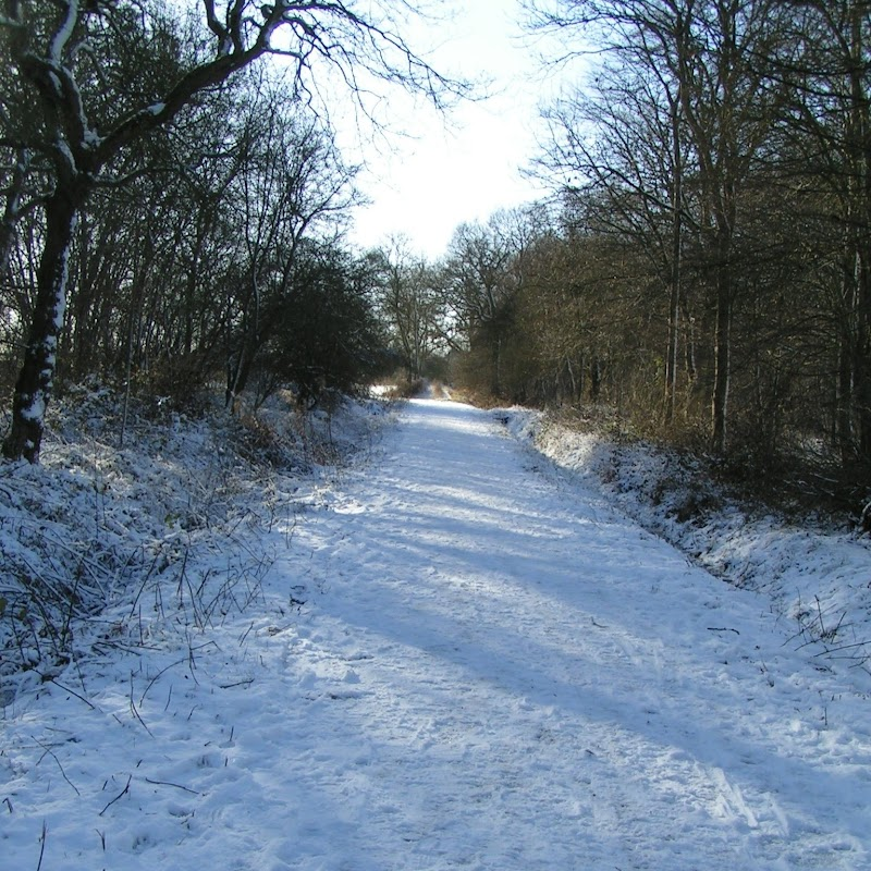 Tattenhoe_13 Snowy Path.jpg