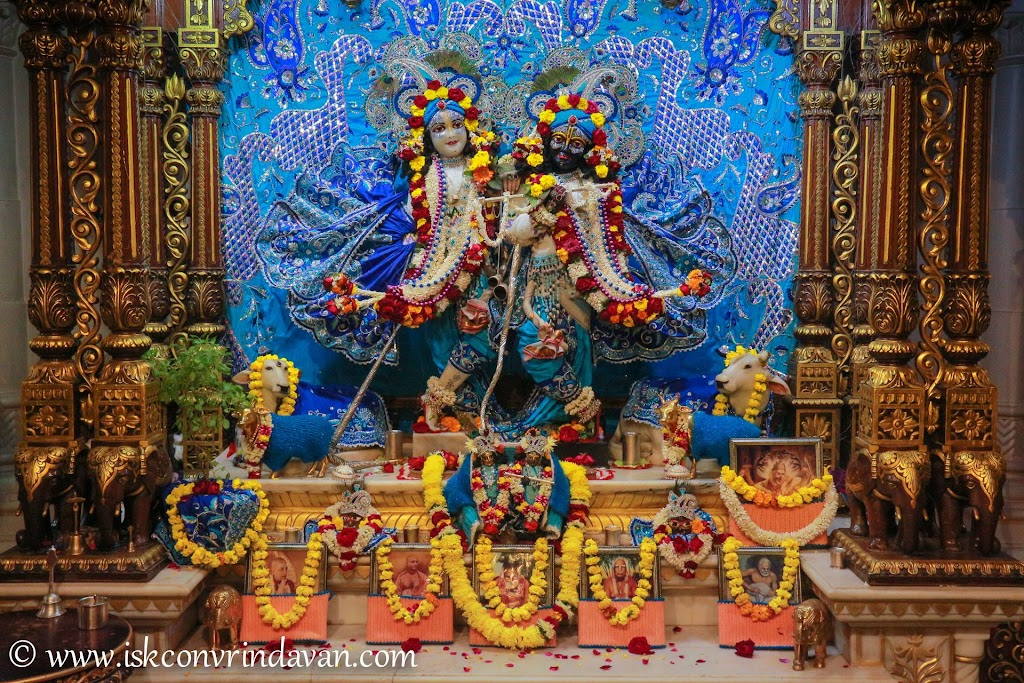 ISKCON Vrindavan Deity Darshan 10 Jan 2017 (17)