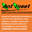 Antinset D