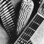 016_Tina Modotti, Pannocchia,  chitarra e cartucciera (per una canzone messicana), 1927.jpg