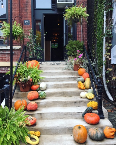 Gorgeous fall decorations in Lincoln Park Chicago