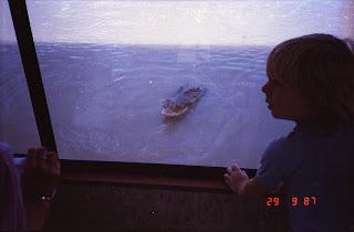 5900Adelaide River Croc Tour