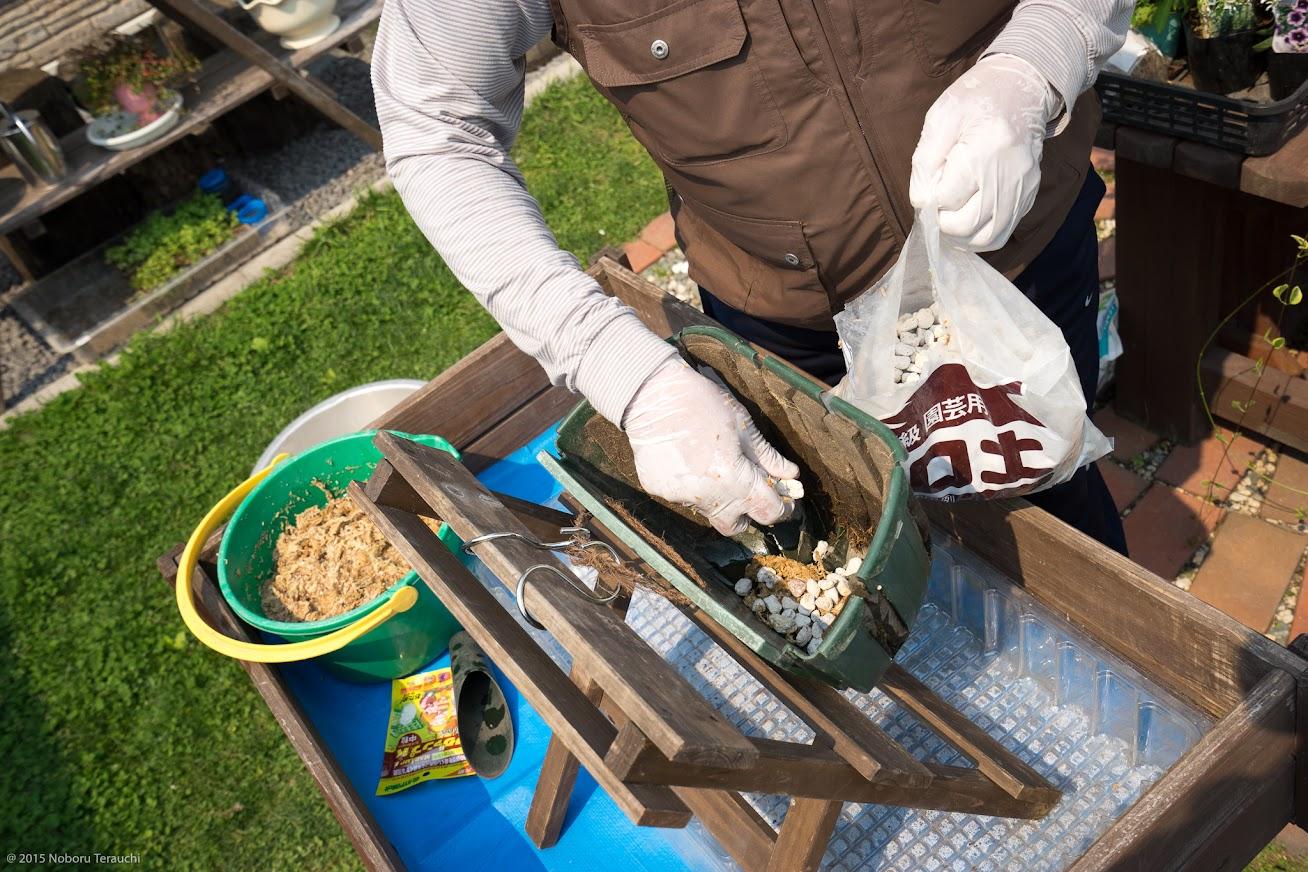 2.水苔を敷き、軽石を置く