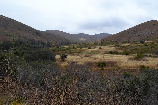 lower La Jolla Valley