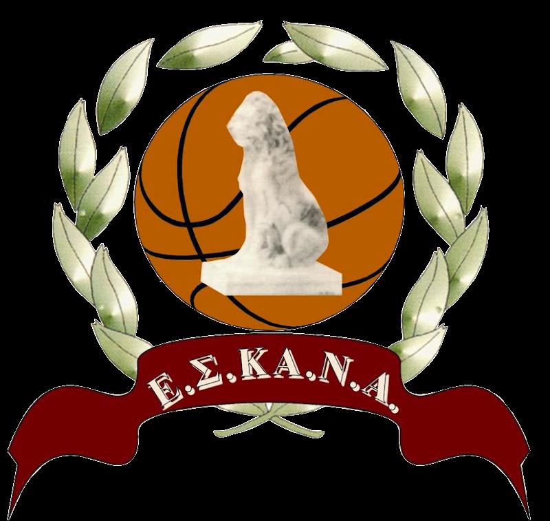 Συμπληρωματική προκήρυξη πρωταθλημάτων περιόδου 2016-17