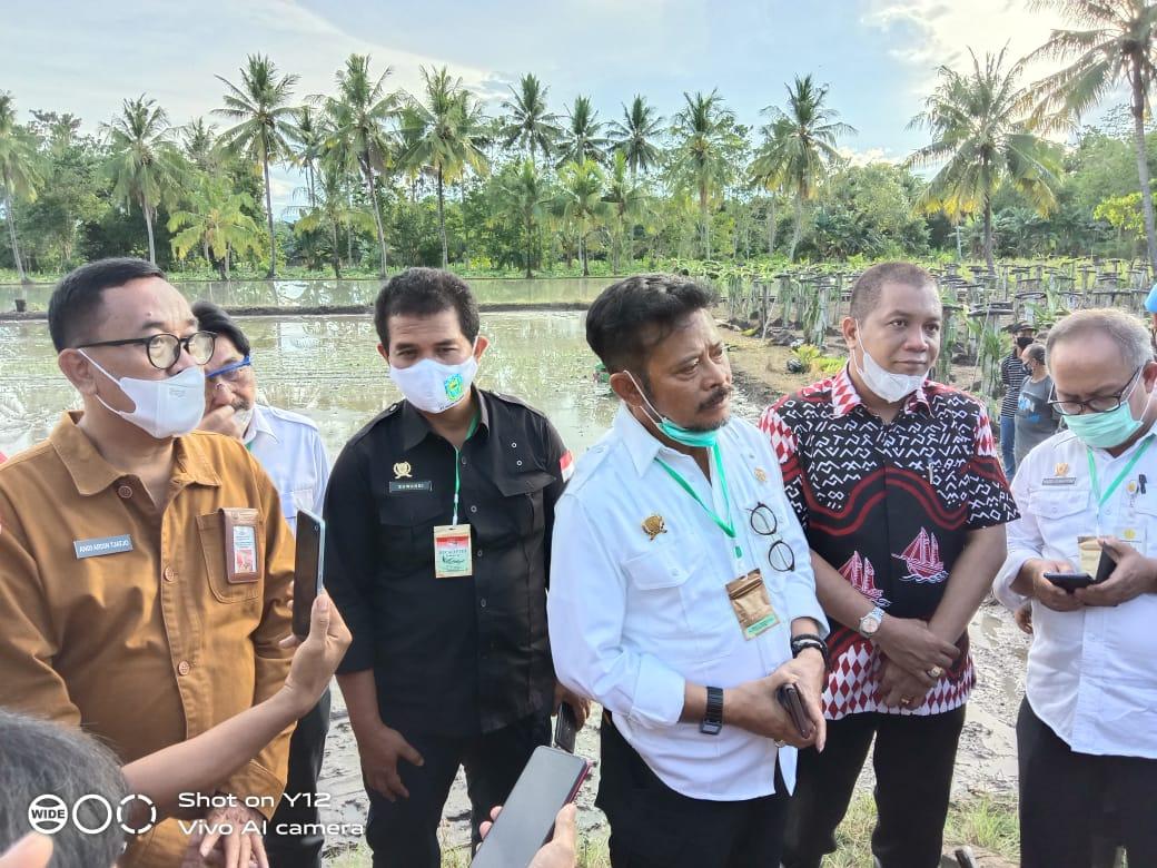 Menteri Pertanian RI Lakukan Gerakan Tanam Sehat di Iwae Kabupaten Soppeng