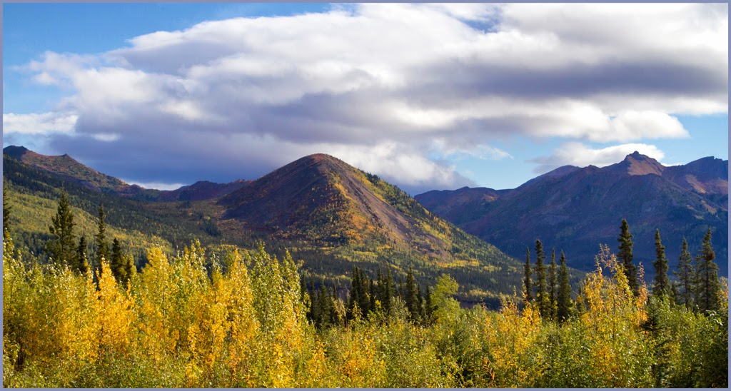 """""""Denali National Park"""" by Jonas Benjamins -- 2nd Place A Special"""