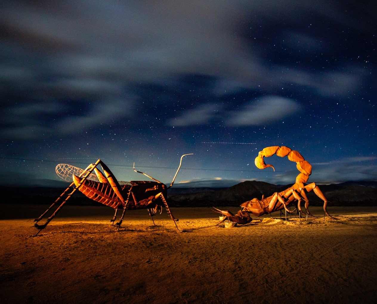 Nightscape in Borrego Springs (Source: Science Nerd Scott)