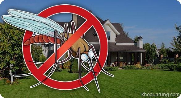 Tiêu diệt muỗi là biện pháp phòng bệnh tốt nhất