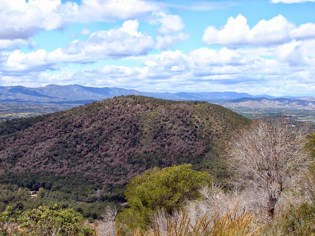 Senderismo - Vilamarxant - Trincheras - Rodana del Pic