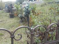 A lekenyei és tibai temetőben (13).JPG