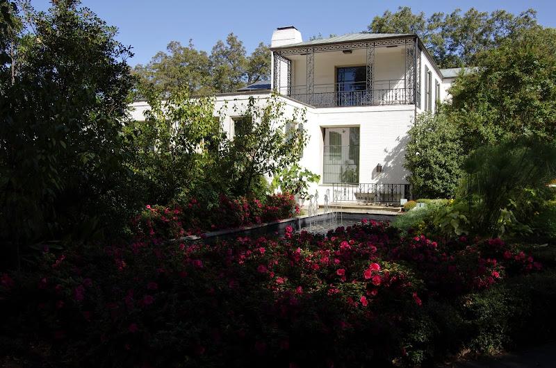 10-26-14 Dallas Arboretum - _IGP4281.JPG
