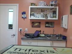 Vet Exam Room