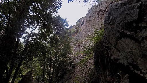Le début de la montée le long de la falaise aux lys orangés
