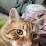 Carol Ann Erhardt's profile photo