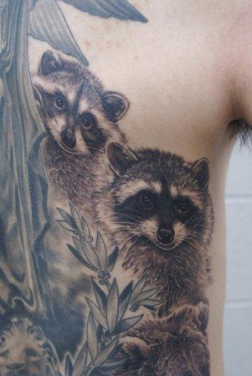 William's Raccoons