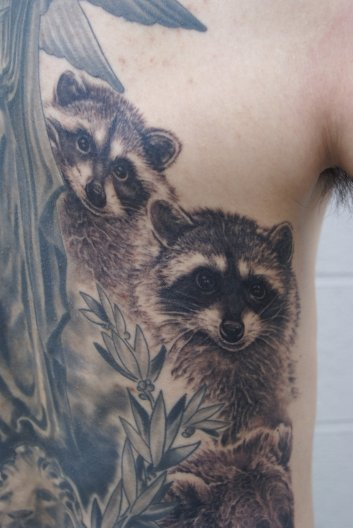 William's Raccoons