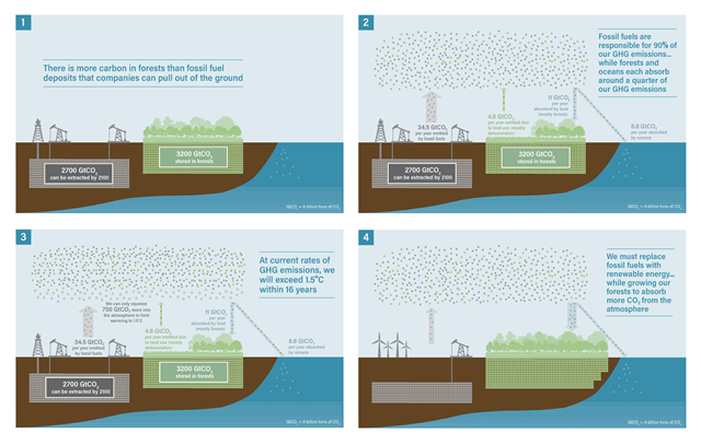 Illustration showing how forests and oceans absorb carbon released by burning fossil fuels. Graphic: Climate and Land Use Alliance
