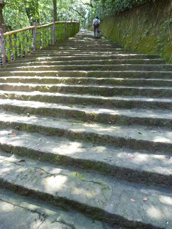 Taipei. Promenade de santé au départ de la station de métro DAHU       06/13 - P1330311.JPG
