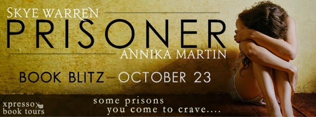 Book Blitz: Prisoner by Annika Martin & Skye Warren