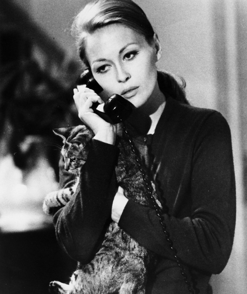 Faye Dunaway and a cat