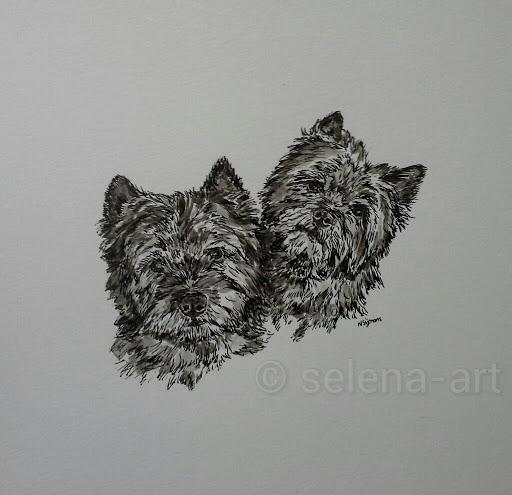 Inkt tekening Beauty en Romy