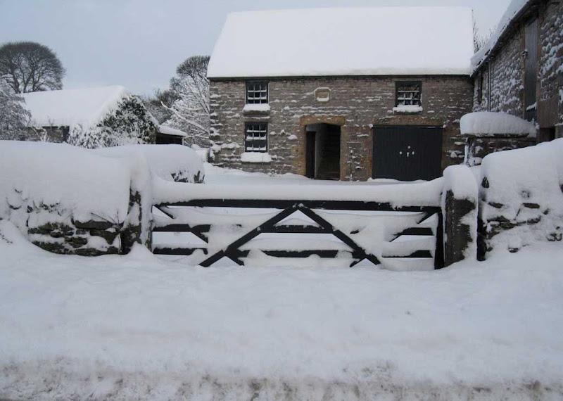 SnowBR6