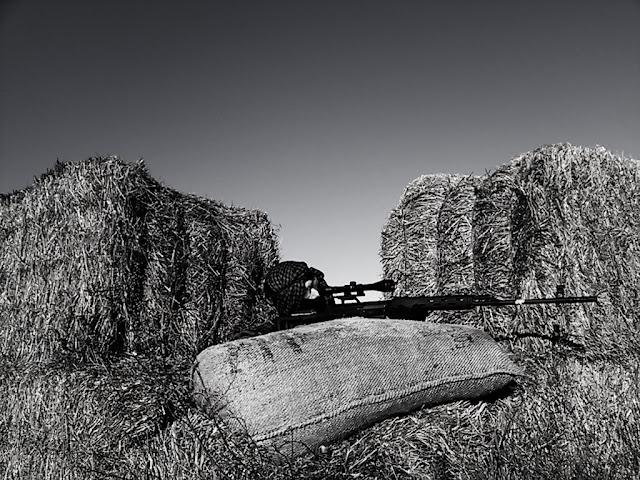 Fotos Tres Reyes 08/01/12 C360_2012-01-08%25252011-38-55