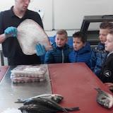 Op bezoek bij de visboer, groep 3a