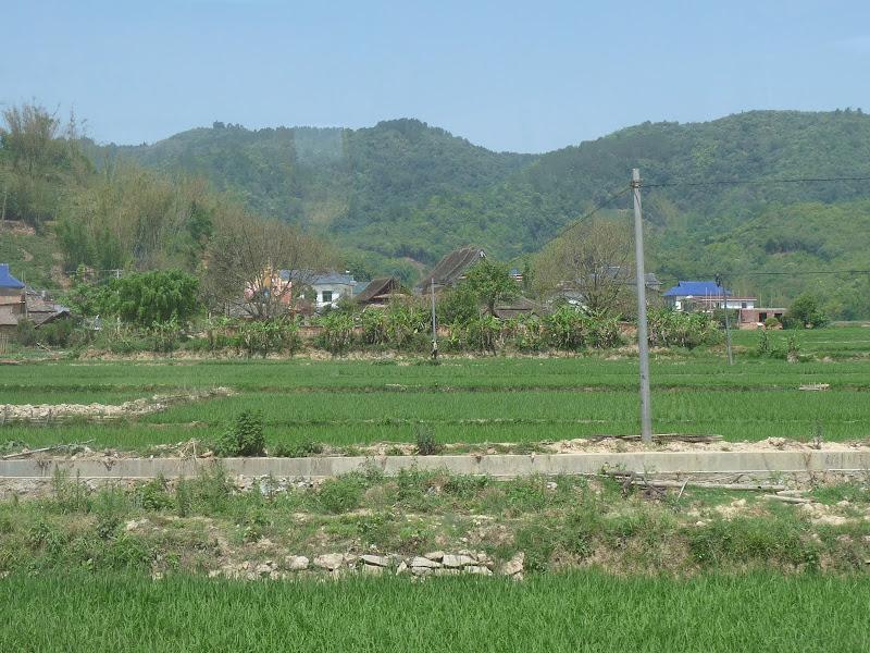 Chine: randonnée xishangbanna, région de Bada - Picture%2B761.jpg