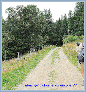 Virée en Alsacie et Vosgie Wap_2550_BD
