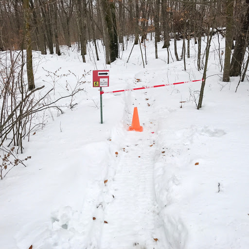 Twin Lakes singletrack closed to fat biking until cooler temps return